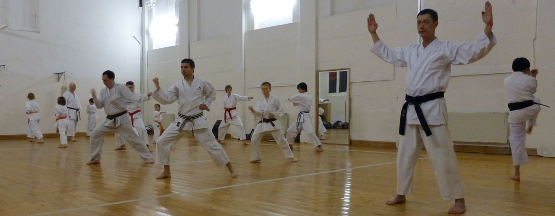 Kata contains most of the techniques of shotokan karate